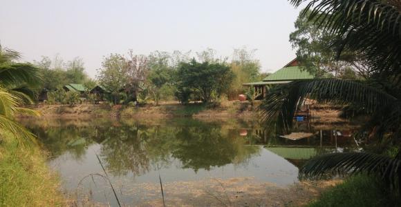 Permakultur Praktikum in Thailand