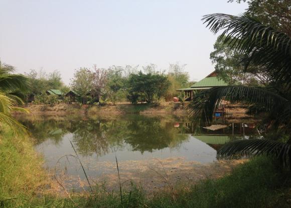 Teich und Häuser