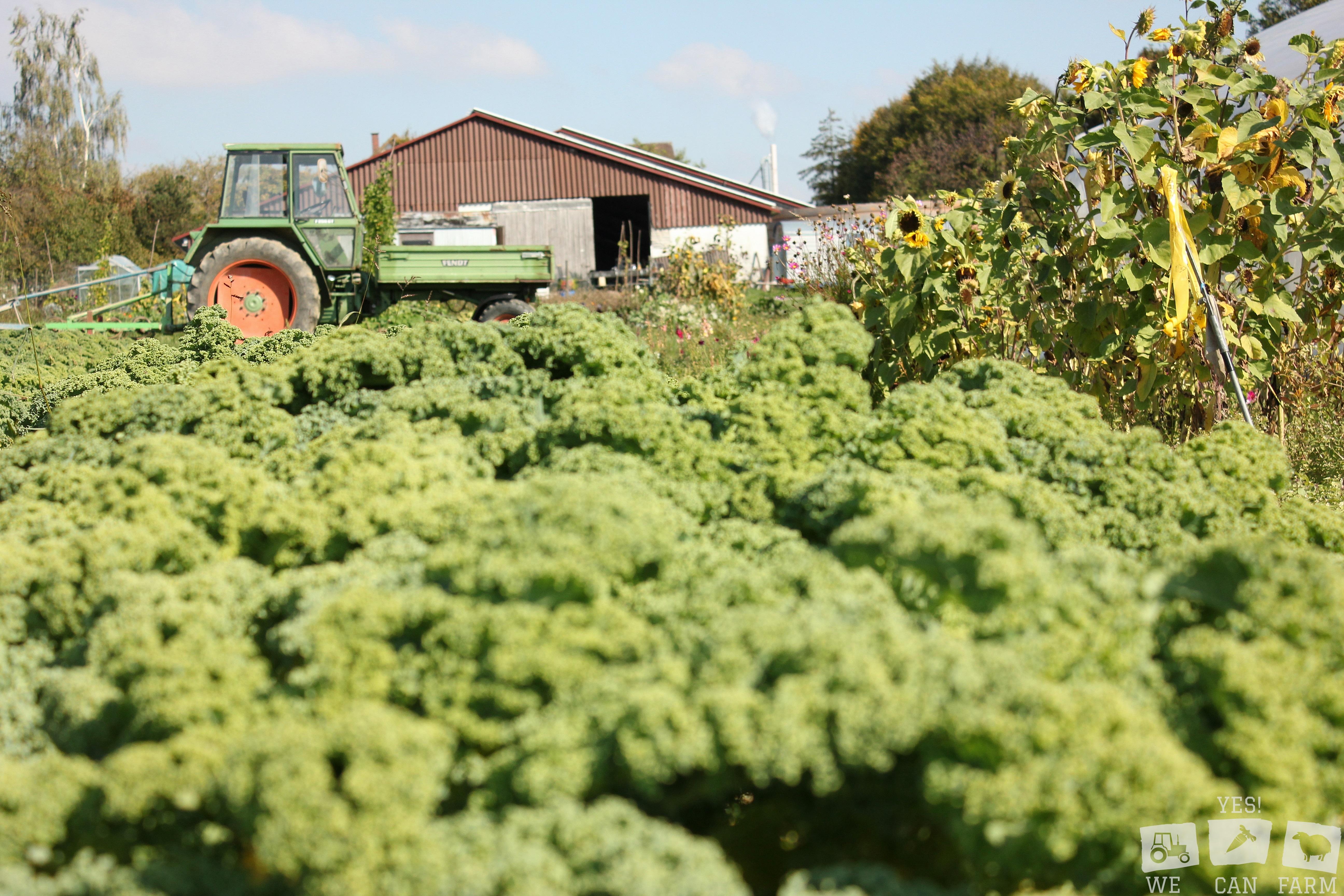 Solidarische Landwirtschaft Ravensburg