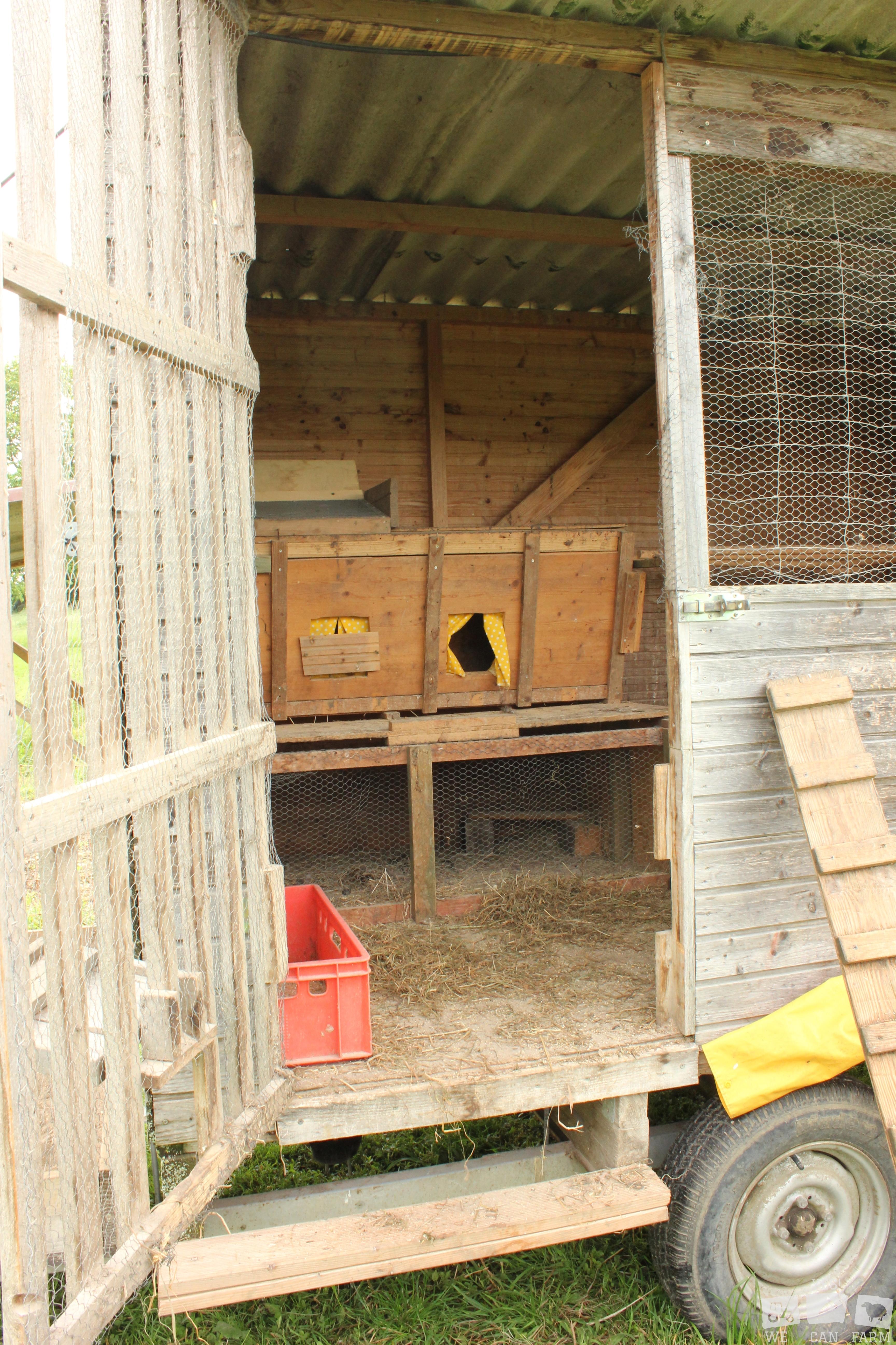Hühner leben gemütlich Haettelihof