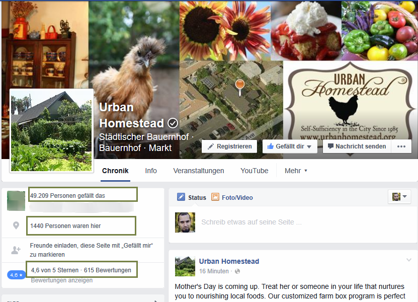 Social Media View of the Urban Homestead