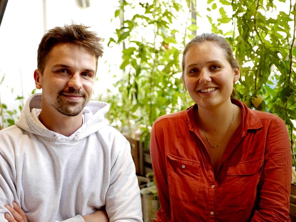 Team München Querfeld Großhandel Obst Gemüse