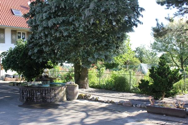 Biolandhof Kelly und Warnke, Hof mit Bauerngarten