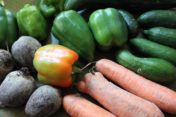 Gemüse zu gut für die Tonne Foodsharing