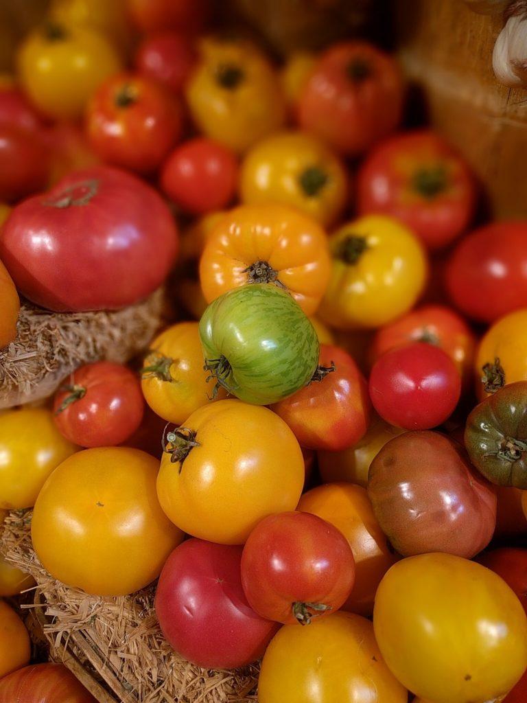 Grüne, gelbe, rote, schwarze Tomaten - viel Auswahl