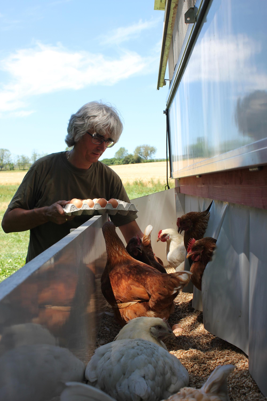 Solidarische Hühnergemeinschaft als innovatives Vermarktungsmodell
